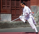 1Wudang Spear.png