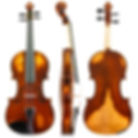 Daintree-Violin-D10_WEB800.jpg
