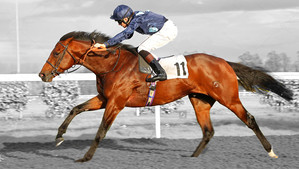 Rangali Island brings up the 100% strike rate with European three year olds...