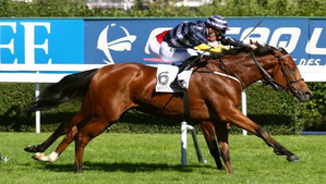 Rosental Storms to Stakes Victory
