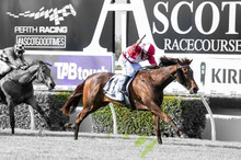 Inspirational Girl storms to Railway (G1) Success