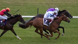 Unbeaten Stakes winner Ten Year Ticket sold to Hong Kong
