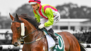 Montoya's Secret takes the Vinery (G1)