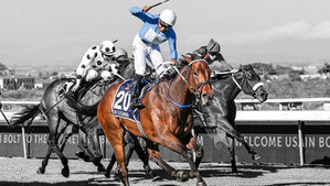Oh Susanna named Horse of the Year