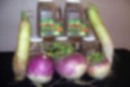 Plot-Topper-big-Radish-turnips.jpg
