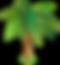 palmier-p-1_modifié.png