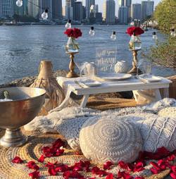 proposal picnics