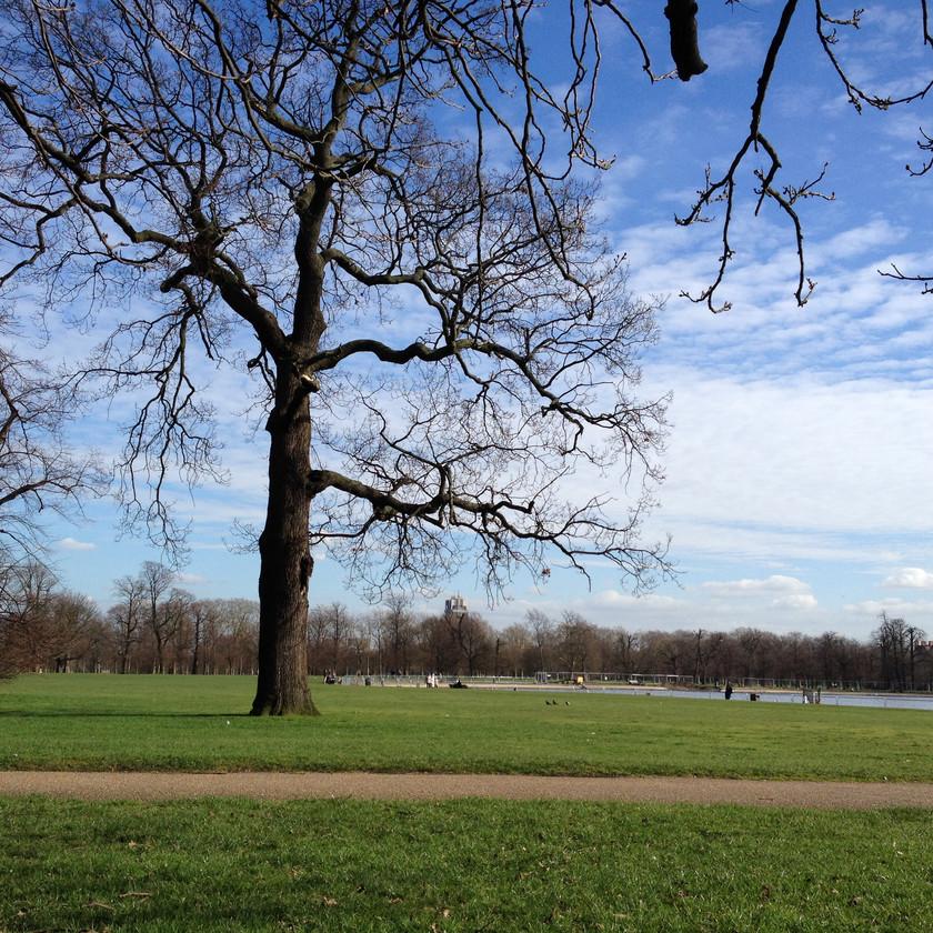 Hyde Park morning walk