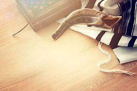 shofar talis.jpg