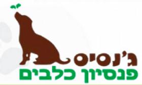 sop-resize-200-לוגו גנסיס.png