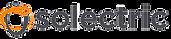 solectric_logo_header59391504ba5b8_edite