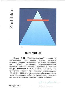 VIESSMANN 1.jpg