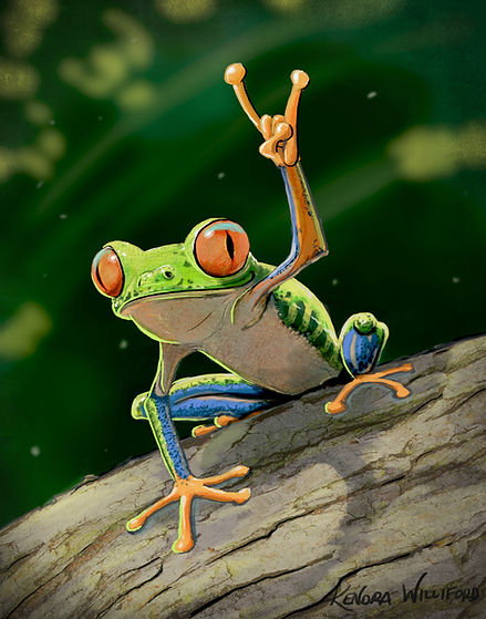 Rock Frog illustration