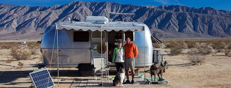 happy-dogs-airstream