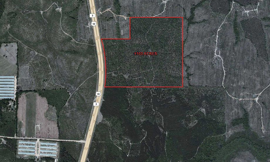 Taylor County- Property in GA