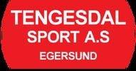 Tengesdal sport.png