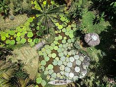 Reserva Natural.jpg