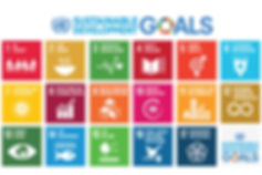 un sustainable development goals poster.