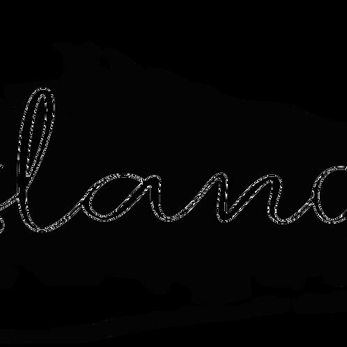Town Script Decal - Long Island