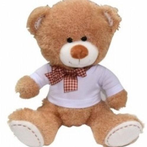 Teddy Bear with Custom Tshirt