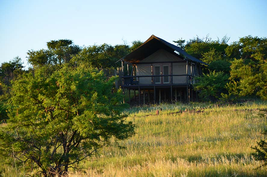 Springbok Lodge 6