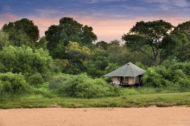 &Beyond-Ngala-Tented-Camp-8