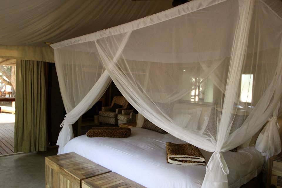 Tuli Safari Lodge 4