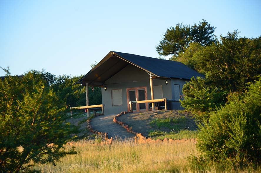 Springbok Lodge 5