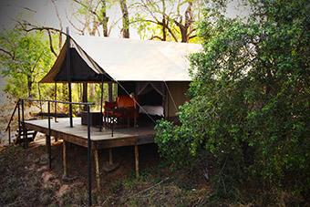 Honeyguide Tented Camps -Khoka Moya 1