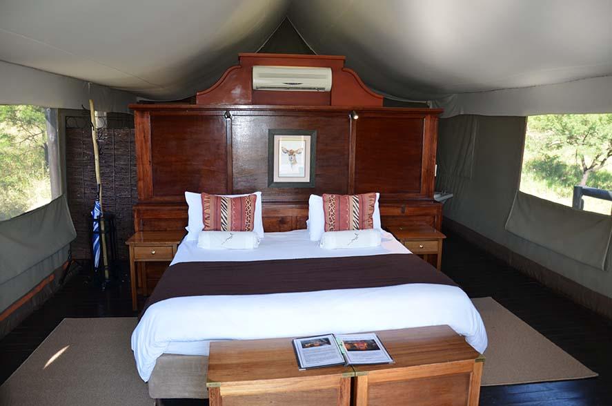 Springbok Lodge 9