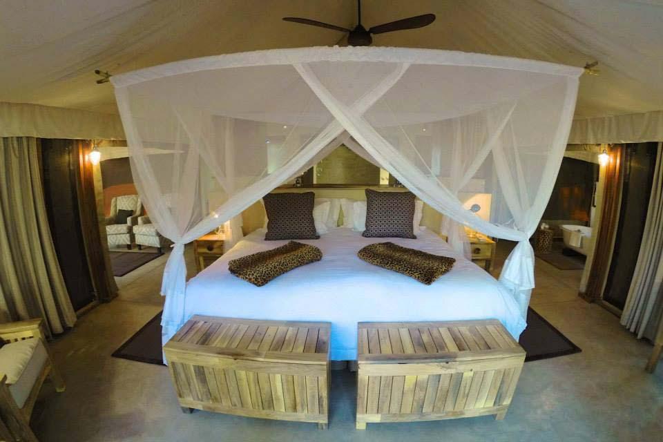 Tuli Safari Lodge 7