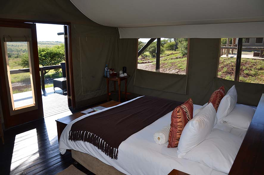 Springbok Lodge 8