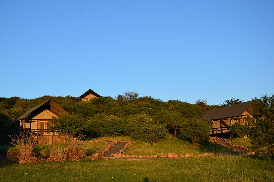 Springbok Lodge 4