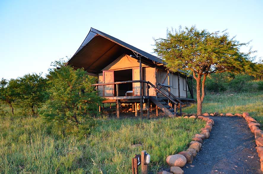 Springbok Lodge 2