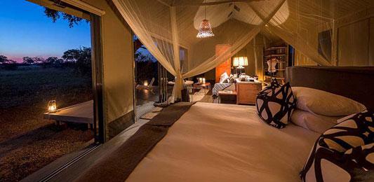 Linkwasha-Camp---Zimbabwe-7