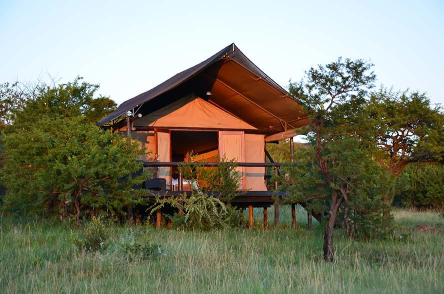 Springbok Lodge 1