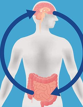 gut-brain2-1200x628.jpg