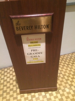 Clive Davis' Pre Grammy Celebration