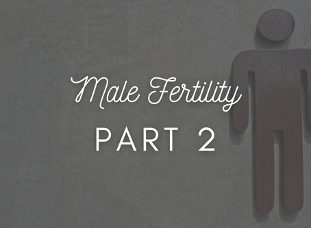 Male Fertility Part 2: Health and Lifestyle
