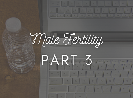 Male Fertility Part 3: Environmental Factors
