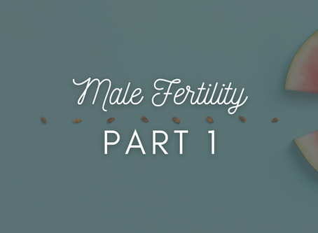 Male Fertility: Part 1 (of 3!)