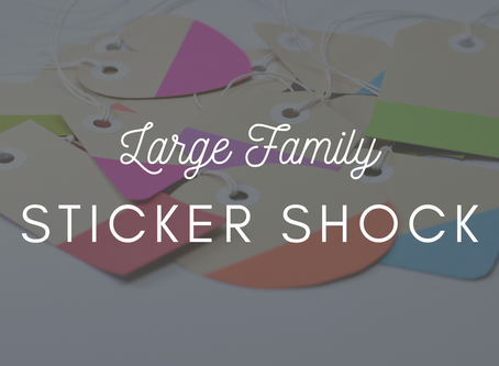 Large Family Sticker Shock