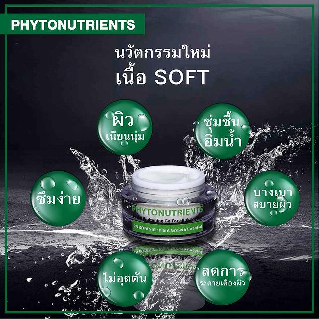 6 จุดเด๋น ครีมรักษาฝ้า Phytonutrient