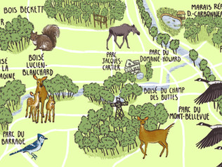 Maps   Cartes