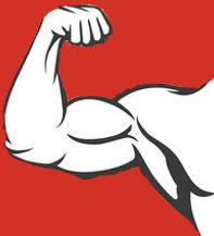 bodybuilder-muscle-flex-arm-vector-14410
