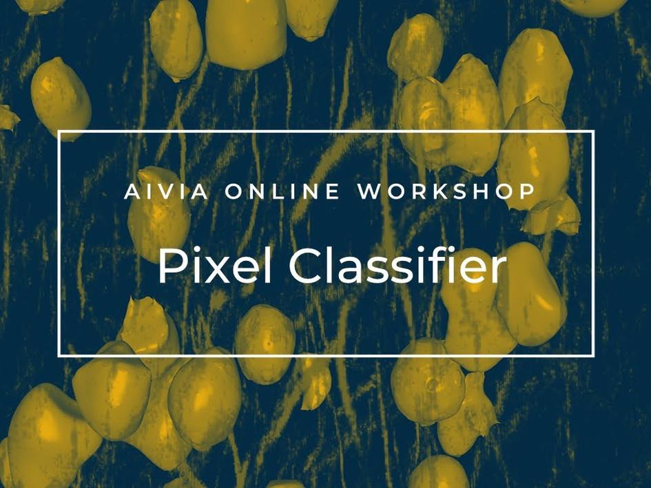 Pixel Classifier