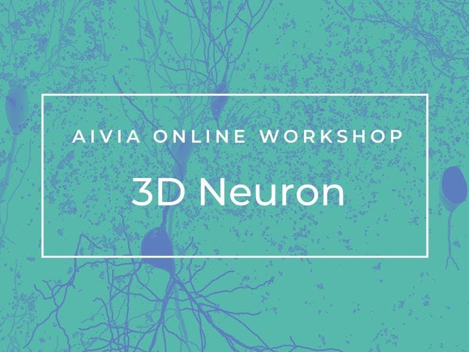 3D Neuron
