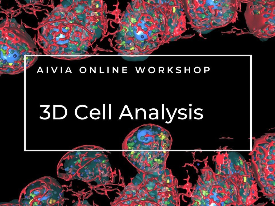 3D Cell Analysis