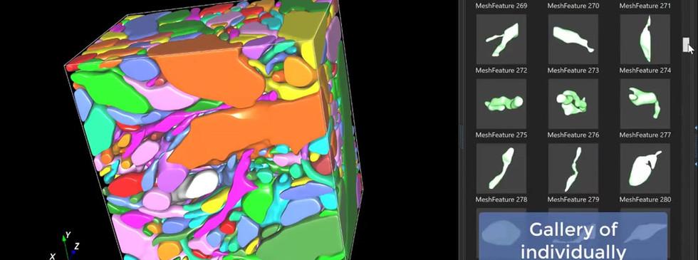 Deep learning 3DEM segmentation