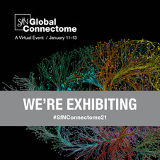 SfN Global Connectome